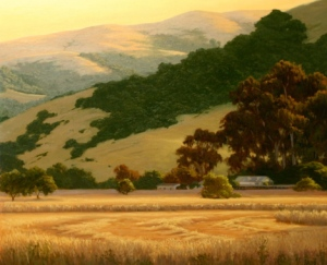 CA Hills, Fields