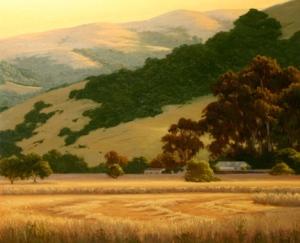 CA Hills, Fields