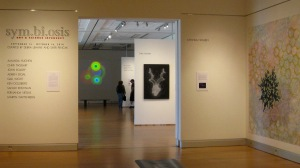 """Installation view, """"Drought"""" in background."""